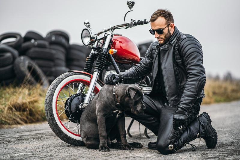 Bike Riding Leather Pants
